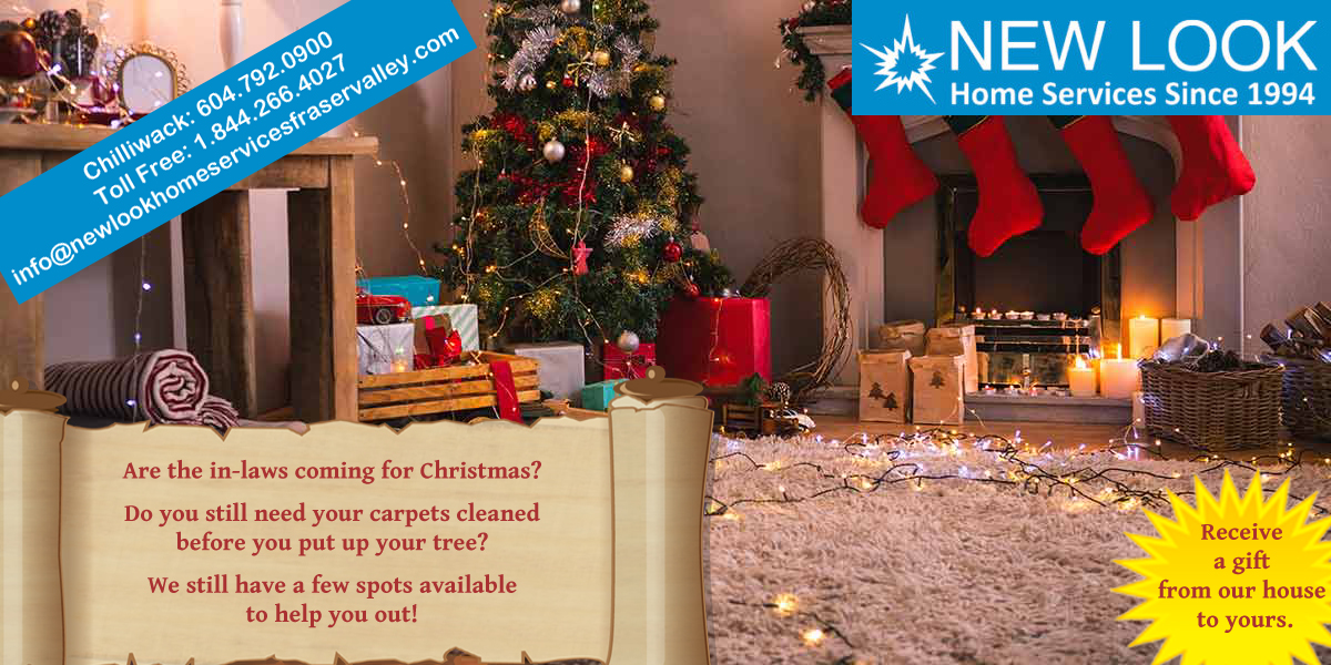 Clean your carpets before you put up your Christmas tree
